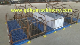 Double Farrowing Crate FC007